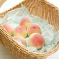 Peach_0384